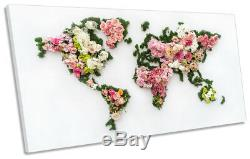 World Map Floral Flowers Picture PANORAMIC CANVAS WALL ART Print